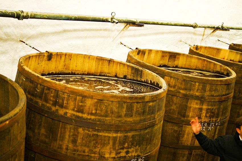 下面発酵しながら春を待つピルスナー