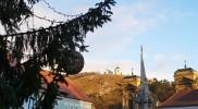 ツリーナメの聖なる丘