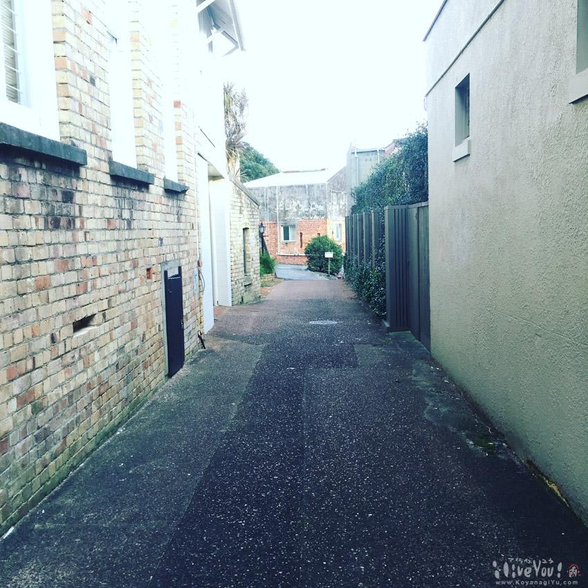 Auckland201607-4