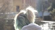 輝くわたしの白髪