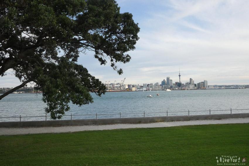 Auckland201607-26