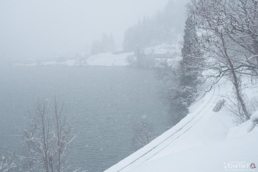 きたぞ! 吹雪の向こうに日狩りが見えた!