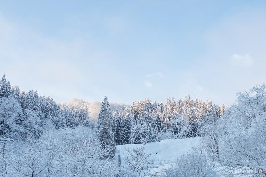 朝日に浮かび上がる雪景色