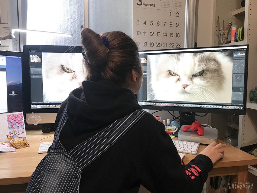 同じ写真表示するとよく分かるので、その違いに吸い寄せられるデザイナー